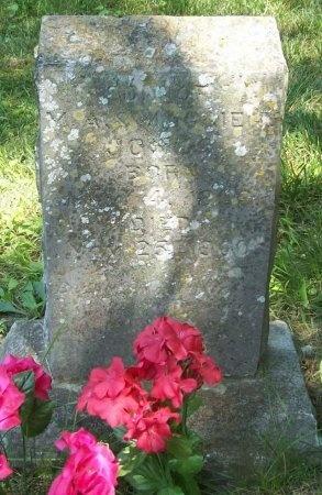 JONES, SON - McDonald County, Missouri   SON JONES - Missouri Gravestone Photos
