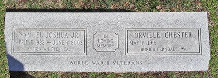 CHESTER, ORVILLE VETERAN WWII - McDonald County, Missouri | ORVILLE VETERAN WWII CHESTER - Missouri Gravestone Photos