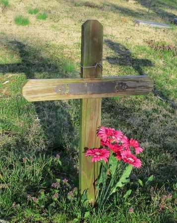HENSON LAMB, NOBA - McDonald County, Missouri | NOBA HENSON LAMB - Missouri Gravestone Photos