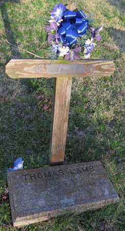 LAMB, WILLIAM - McDonald County, Missouri   WILLIAM LAMB - Missouri Gravestone Photos