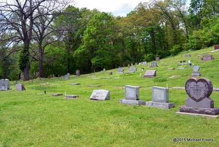 *, LANAGAN CEMETERY OVERVIEW - McDonald County, Missouri | LANAGAN CEMETERY OVERVIEW * - Missouri Gravestone Photos