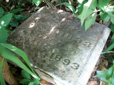 LIBLEE, O - McDonald County, Missouri | O LIBLEE - Missouri Gravestone Photos