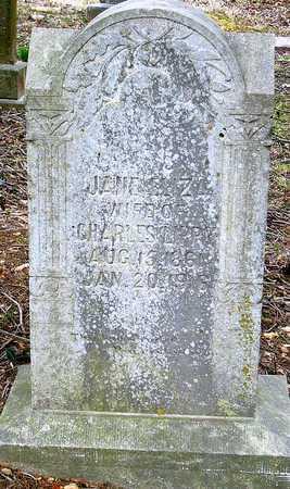 LIPPY, JANE ELIZA - McDonald County, Missouri | JANE ELIZA LIPPY - Missouri Gravestone Photos