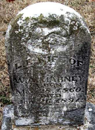 MCBEE MARNEY, LOUISA ELIZA - McDonald County, Missouri | LOUISA ELIZA MCBEE MARNEY - Missouri Gravestone Photos
