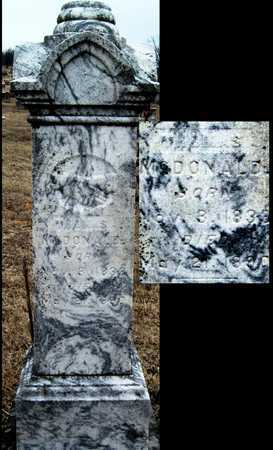 MCDONALD, THOMAS - McDonald County, Missouri | THOMAS MCDONALD - Missouri Gravestone Photos
