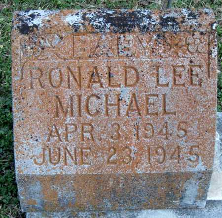 MICHAEL, RONALD LEE - McDonald County, Missouri | RONALD LEE MICHAEL - Missouri Gravestone Photos