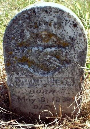 MITCHELL, F M - McDonald County, Missouri | F M MITCHELL - Missouri Gravestone Photos