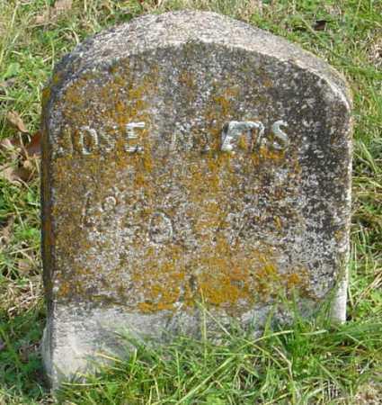 MYERS, JOSE - McDonald County, Missouri | JOSE MYERS - Missouri Gravestone Photos