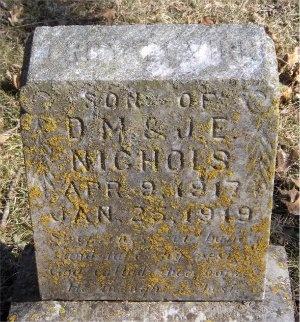 NICHOLS, TROY - McDonald County, Missouri   TROY NICHOLS - Missouri Gravestone Photos