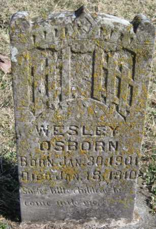 OSBORN, WESLEY - McDonald County, Missouri | WESLEY OSBORN - Missouri Gravestone Photos