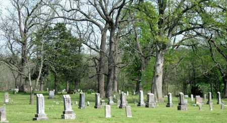 OVER VIEW, CEMETERY - McDonald County, Missouri   CEMETERY OVER VIEW - Missouri Gravestone Photos
