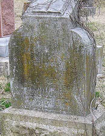 REECE, ALBERT CHENOWETH - McDonald County, Missouri   ALBERT CHENOWETH REECE - Missouri Gravestone Photos