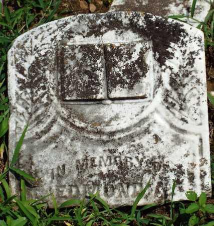 TENNISON, EDMOND A - McDonald County, Missouri   EDMOND A TENNISON - Missouri Gravestone Photos