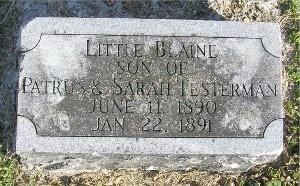 TESTERMAN, LITTLE BLAINE - McDonald County, Missouri | LITTLE BLAINE TESTERMAN - Missouri Gravestone Photos