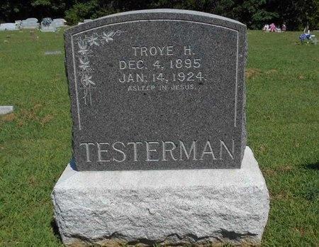 TESTERMAN, TROYE HENRY - McDonald County, Missouri | TROYE HENRY TESTERMAN - Missouri Gravestone Photos