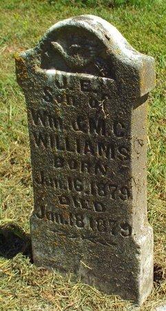 WILLIAMS, J E - McDonald County, Missouri | J E WILLIAMS - Missouri Gravestone Photos