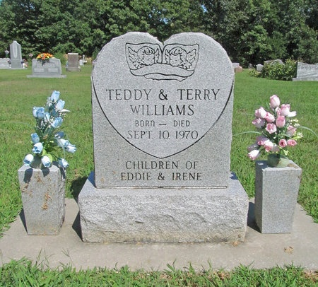 WILLIAMS, TERRY - McDonald County, Missouri | TERRY WILLIAMS - Missouri Gravestone Photos