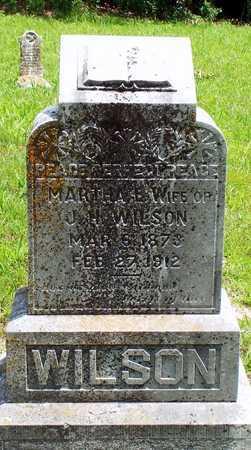 WILSON, MARTHA E - McDonald County, Missouri   MARTHA E WILSON - Missouri Gravestone Photos
