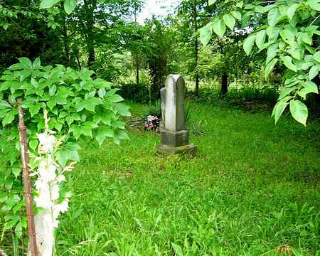 *, CEMETERY OVERVIEW - Miller County, Missouri | CEMETERY OVERVIEW * - Missouri Gravestone Photos