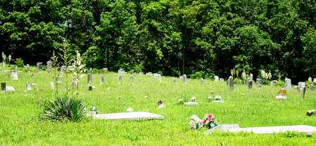 *, CEMETERY OVERVIEW - Miller County, Missouri   CEMETERY OVERVIEW * - Missouri Gravestone Photos