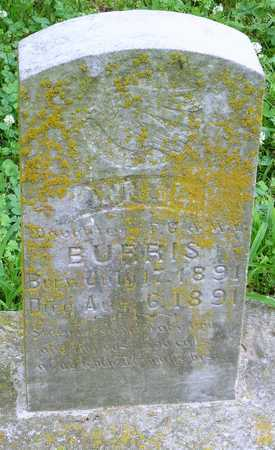 BURRIS, ANNA B - Miller County, Missouri | ANNA B BURRIS - Missouri Gravestone Photos