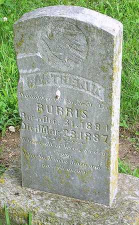 BURRIS, BARTHENIA - Miller County, Missouri   BARTHENIA BURRIS - Missouri Gravestone Photos