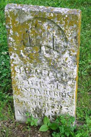 DAVIDSON BURRIS, ELIZABETH - Miller County, Missouri | ELIZABETH DAVIDSON BURRIS - Missouri Gravestone Photos
