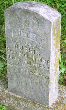 BURRIS, LUTHER - Miller County, Missouri | LUTHER BURRIS - Missouri Gravestone Photos