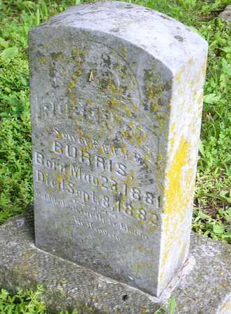 BURRIS, ROBERT L - Miller County, Missouri | ROBERT L BURRIS - Missouri Gravestone Photos