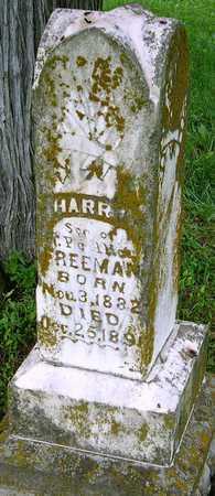 FREEMAN, HARRY - Miller County, Missouri | HARRY FREEMAN - Missouri Gravestone Photos