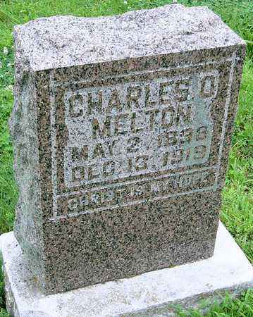 MELTON, CHARLES O - Miller County, Missouri   CHARLES O MELTON - Missouri Gravestone Photos
