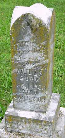 MOLES, ALMA JEWELL - Miller County, Missouri | ALMA JEWELL MOLES - Missouri Gravestone Photos