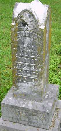 MOLES, HERBERT - Miller County, Missouri | HERBERT MOLES - Missouri Gravestone Photos