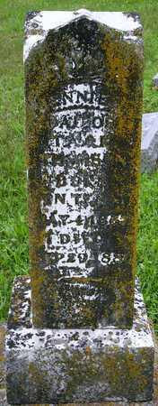 THOMSON, ANNIE - Miller County, Missouri   ANNIE THOMSON - Missouri Gravestone Photos