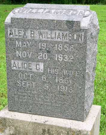 WILLIAMSON, ALICE CAPITOLIA - Miller County, Missouri | ALICE CAPITOLIA WILLIAMSON - Missouri Gravestone Photos