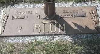BLUM, ELAINE E - Morgan County, Missouri | ELAINE E BLUM - Missouri Gravestone Photos