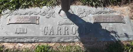 CARROLL, ALBERT H - Morgan County, Missouri | ALBERT H CARROLL - Missouri Gravestone Photos