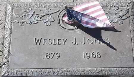 JONES, WESLEY J - Morgan County, Missouri | WESLEY J JONES - Missouri Gravestone Photos