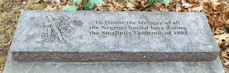 *, AFRICAN AMERICAN MEMORIAL - Newton County, Missouri | AFRICAN AMERICAN MEMORIAL * - Missouri Gravestone Photos