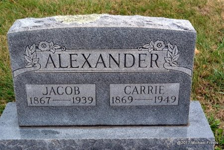 ALEXANDER, CARRIE - Newton County, Missouri | CARRIE ALEXANDER - Missouri Gravestone Photos