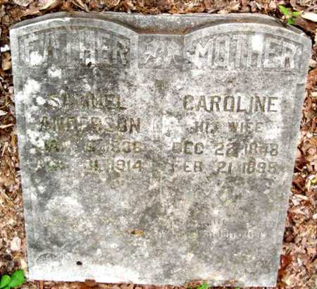 ANDERSON, CAROLYN - Newton County, Missouri | CAROLYN ANDERSON - Missouri Gravestone Photos