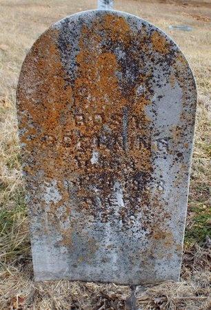 BOEHNING, ROSA - Newton County, Missouri   ROSA BOEHNING - Missouri Gravestone Photos