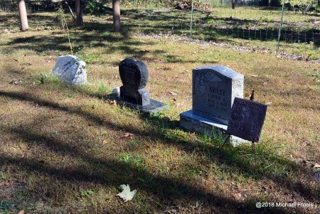 *, BRILEY CEMETERY OVERVIEW - Newton County, Missouri | BRILEY CEMETERY OVERVIEW * - Missouri Gravestone Photos