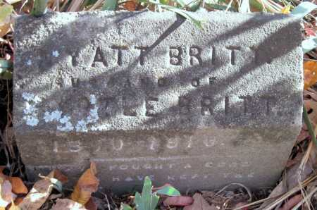 BRITT, WYATT REV - Newton County, Missouri | WYATT REV BRITT - Missouri Gravestone Photos
