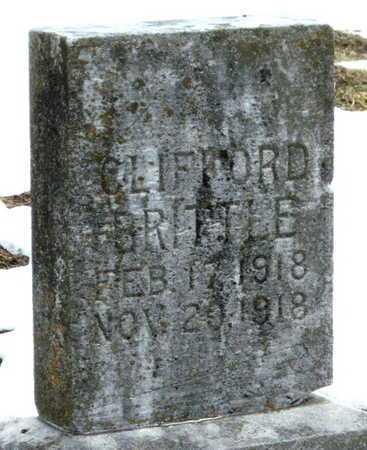 BRITTLE, CLIFFORD FRANCIS - Newton County, Missouri | CLIFFORD FRANCIS BRITTLE - Missouri Gravestone Photos