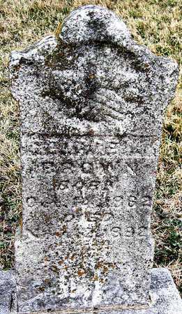 BROWN, GEORGE W - Newton County, Missouri | GEORGE W BROWN - Missouri Gravestone Photos