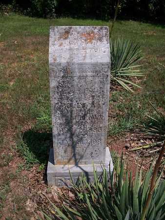 BROWN, MARY ANN - Newton County, Missouri | MARY ANN BROWN - Missouri Gravestone Photos