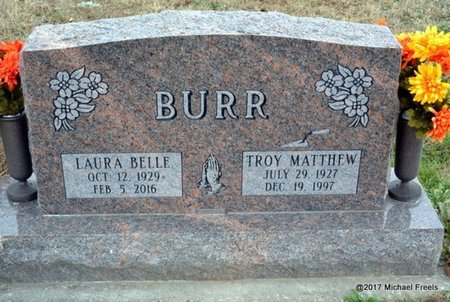BURR, TROY MATTHEW - Newton County, Missouri | TROY MATTHEW BURR - Missouri Gravestone Photos