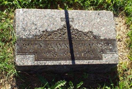 HEMBREE, BILLY WAYNE - Newton County, Missouri | BILLY WAYNE HEMBREE - Missouri Gravestone Photos