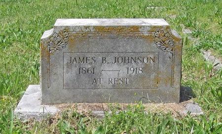JOHNSON, JAMES B - Newton County, Missouri | JAMES B JOHNSON - Missouri Gravestone Photos